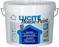 DELTA LUCITE House - Paint Balení 12l