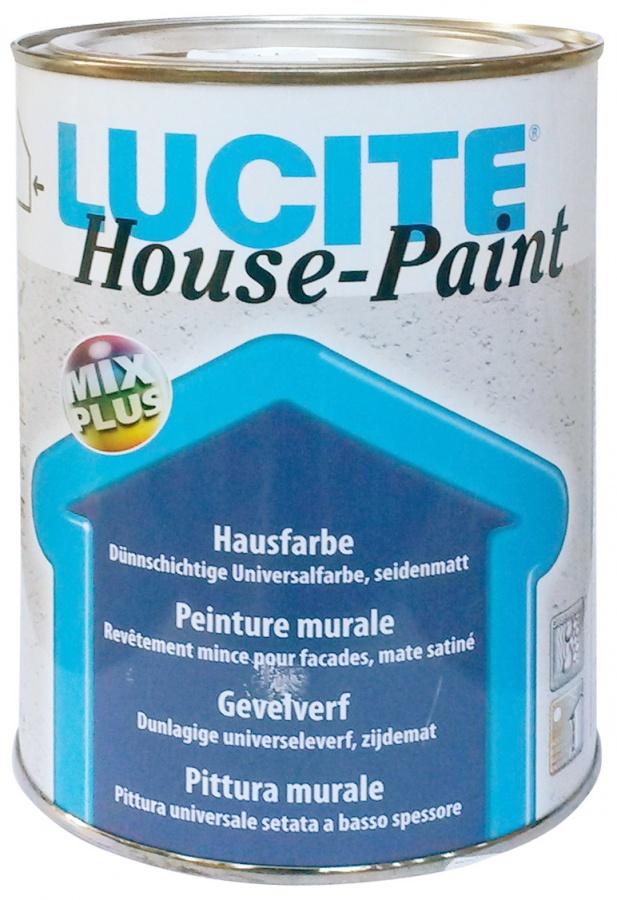 DELTA LUCITE House Paint 2.jpg