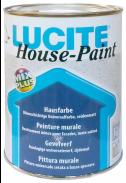 DELTA LUCITE House - PaintBalení 1l